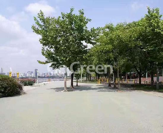 لون رصيف الإسفلت المسامي يسهم بشكل كبير في مدينة الإسفنج